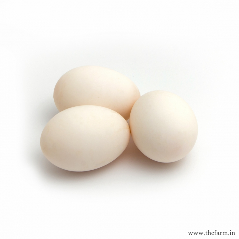 Duck Eggs 6 nos.  DAIRY & EGGS