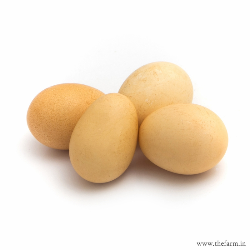 ORGANIC NATTU MUTTAI (COUNTRY EGGS) 6 nos.
