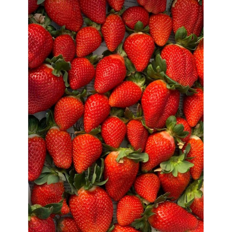 CHEMICAL FREE STRAWBERRIES 200g
